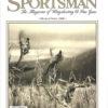 Shooting Sportsman - March/April 2008