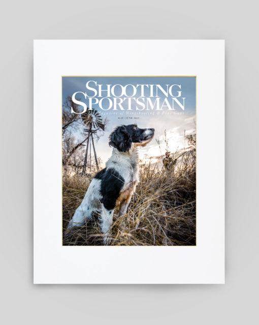 May/June 2017 Cover Print - English Cocker Spaniel